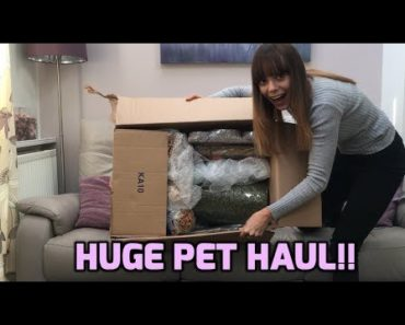 HUGE PET HAUL | PET CARE BY POST | Toys & Treats for Small Animals!