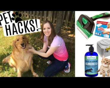 LIFE HACKS FOR PET OWNERS! | Pet Care Tips & Tricks!