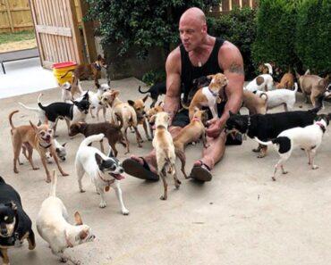 Man Dedicates His Life To Saving Small Animals After Chihuahua