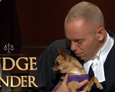 Judge Rinder Falls in Love With a Cute Chihuahua |