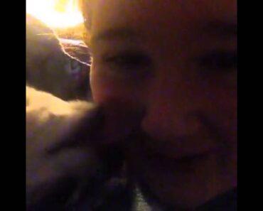 * URGENT!!! Help Potty Training a Chihuahua Puppy!?