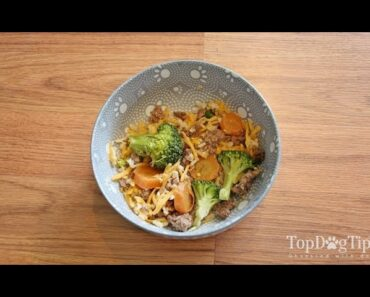 Homemade Dog Food for Small Dogs Recipe (New)