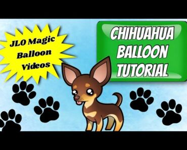 HOW TO MAKE A BALLOON CHIHUAHUA