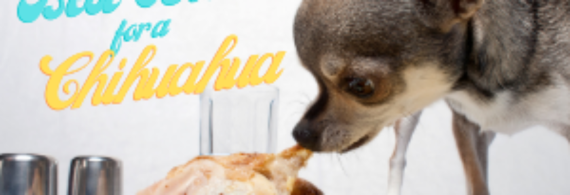 Best Diet for a Chihuahua